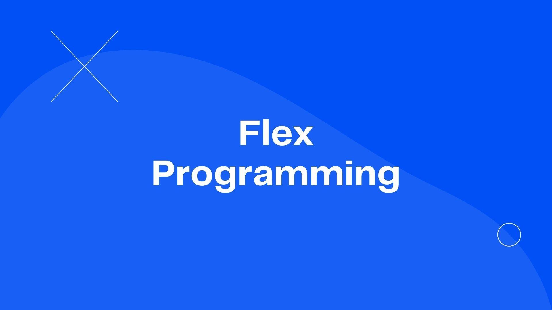 Flex Programming