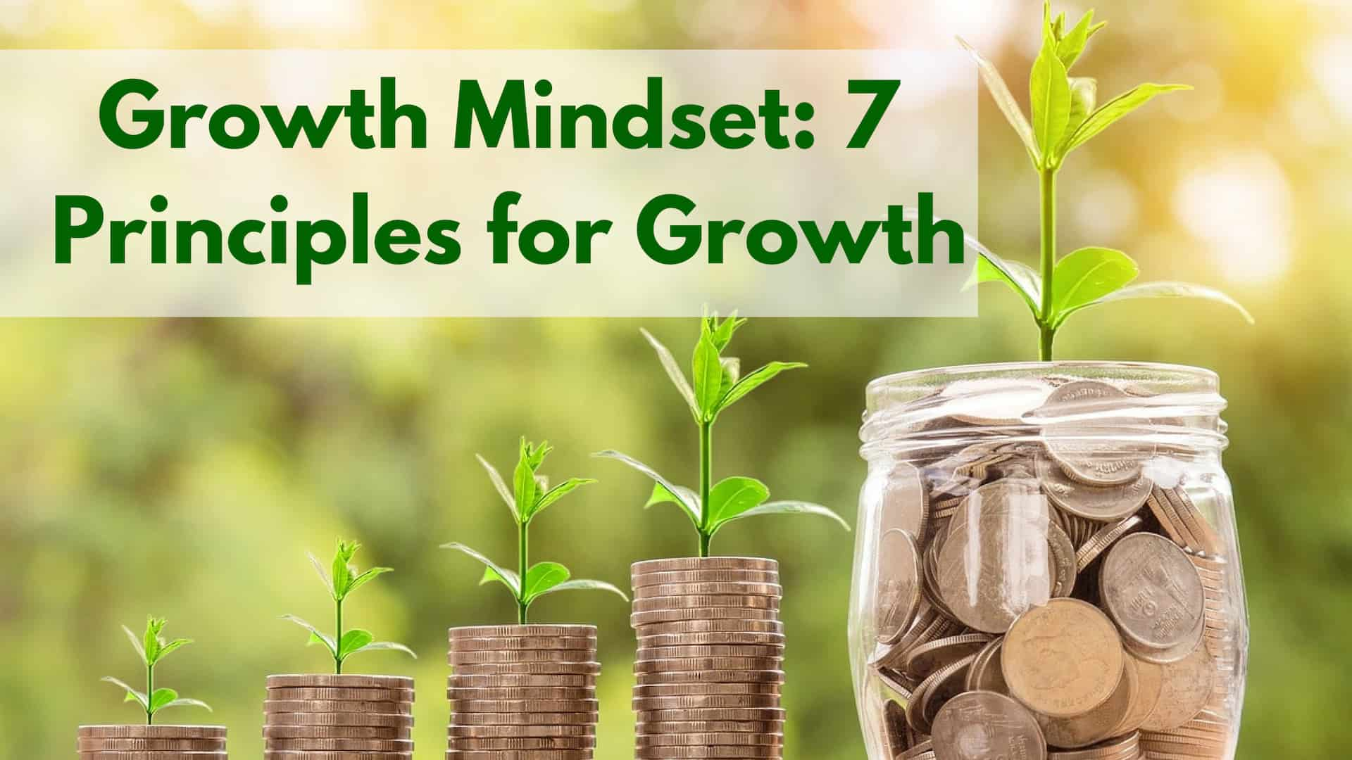 Growth Mindset: 7 Principles For Growth