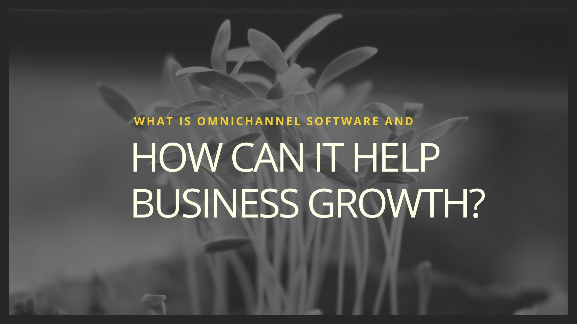 What is Omnichannel Software and How Can It Help Businesses Grow?