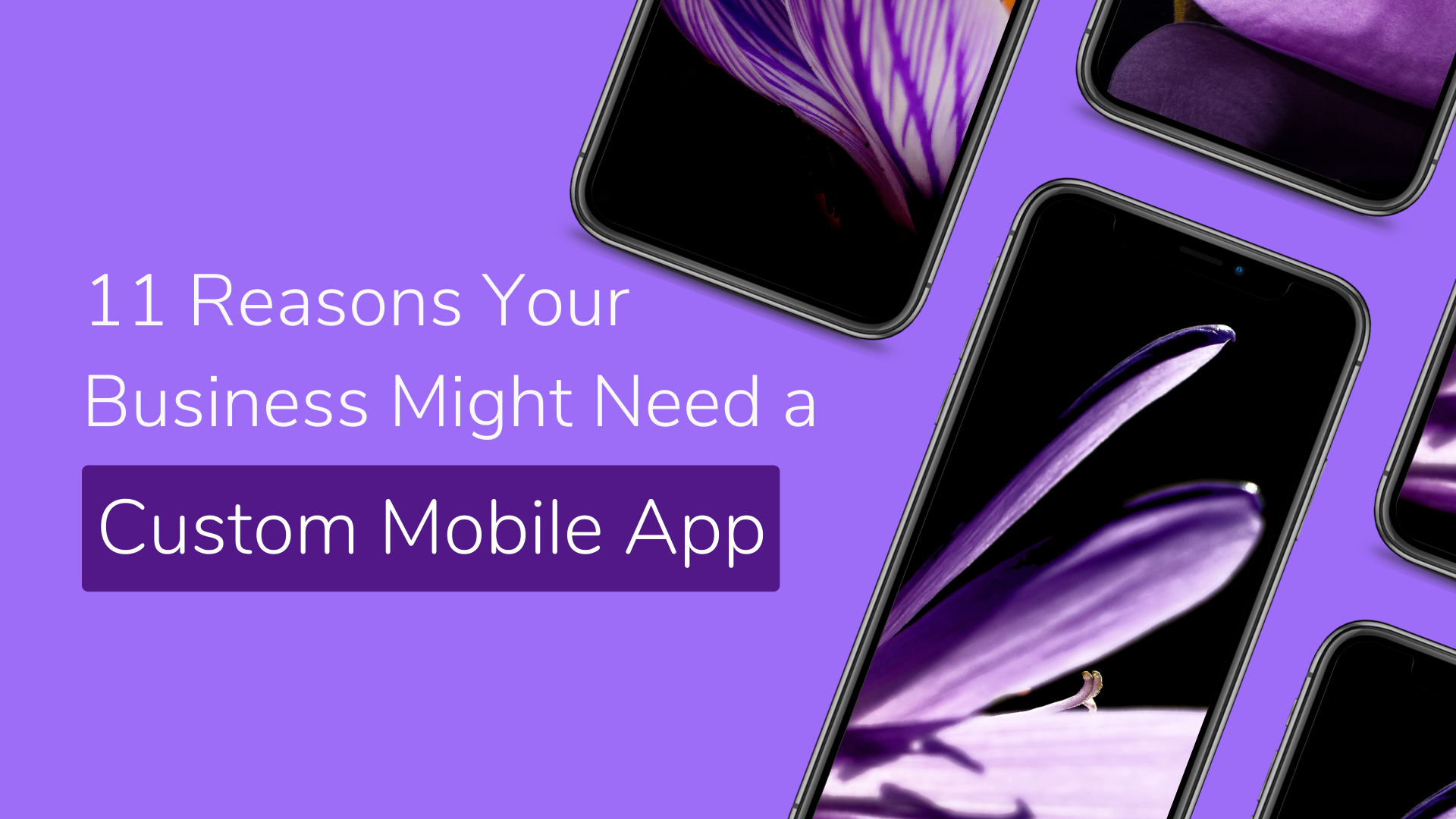 11 Reasons Your Business Might Need a Custom Mobile App