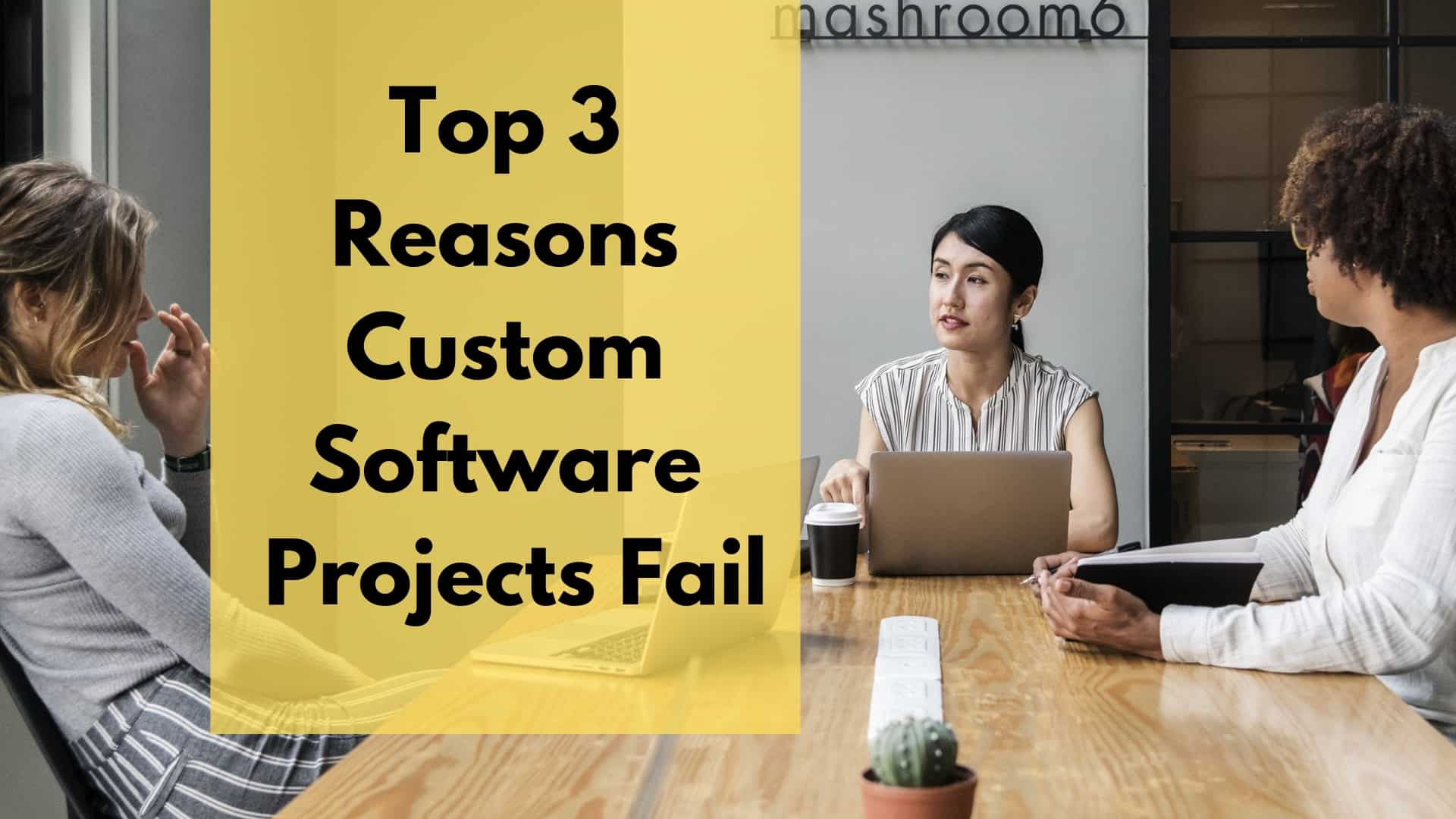 Top 3 Reasons Custom Software Projects Fail