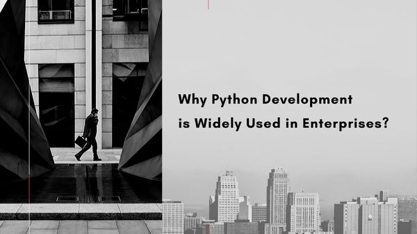 Top Reasons Why Python Development is Widely Used in Enterprises