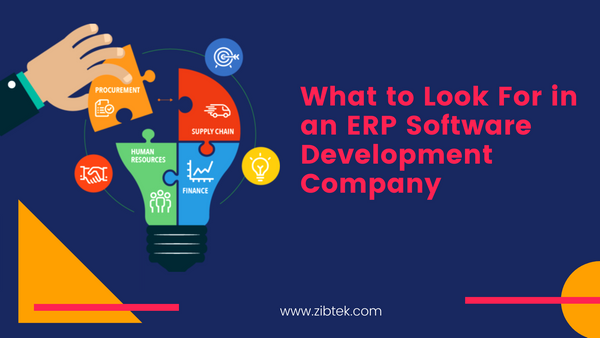 What to Look For in an ERP Software Development Company