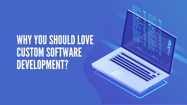 Why You Should Love Custom Software Development?